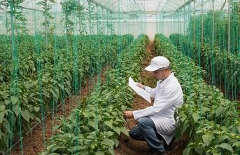 Bitkisel Üretim Destekleme Ödemesi Tebliğinde Değişiklik Yapıldı
