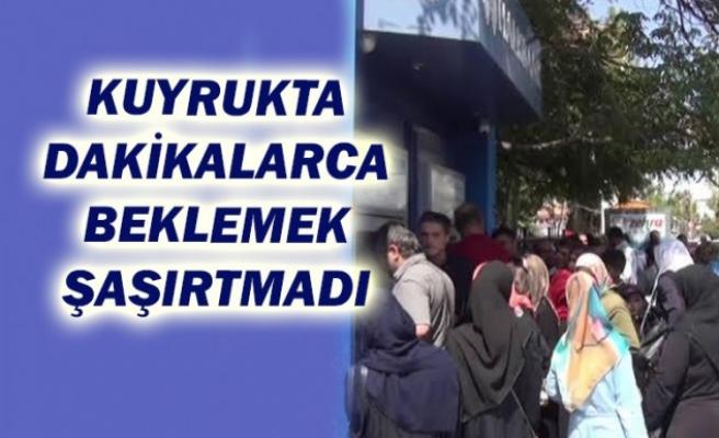 Şanlıurfa'daki mağduriyet rakamlarla gün yüzüne çıktı