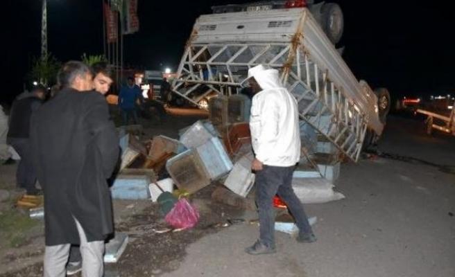Urfa'da arı kovanı yüklü kamyonet ile TIR çarpıştı