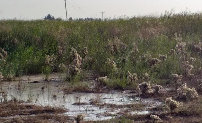 Suruçlu çiftçiler sulama için tepkili
