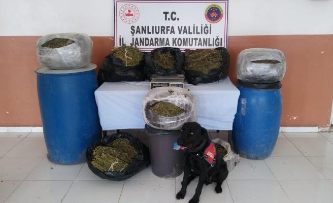 Şanlıurfa'da uyuşturucu operasyonu yapıldı