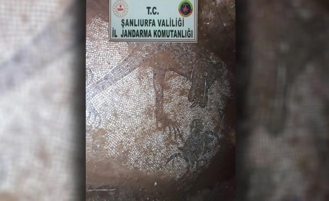 Şanlıurfa'da bir evin bahçesinden mozaik çıktı