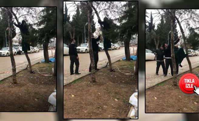 Şanlıurfa'da elektrik borcu yüzünden intihara kalkıştı