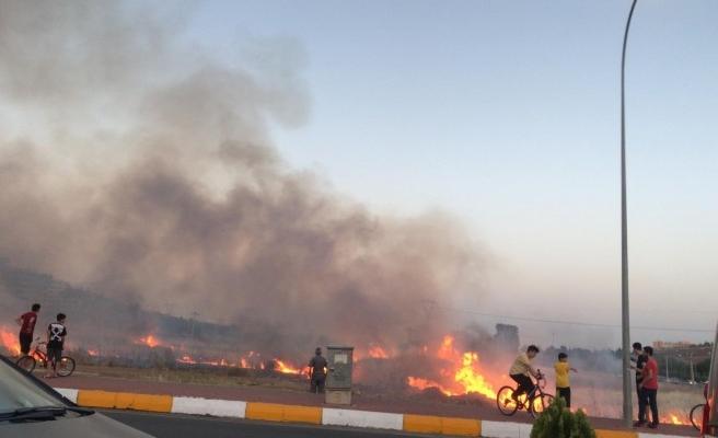 Şanlıurfa'da boş arazide yangın