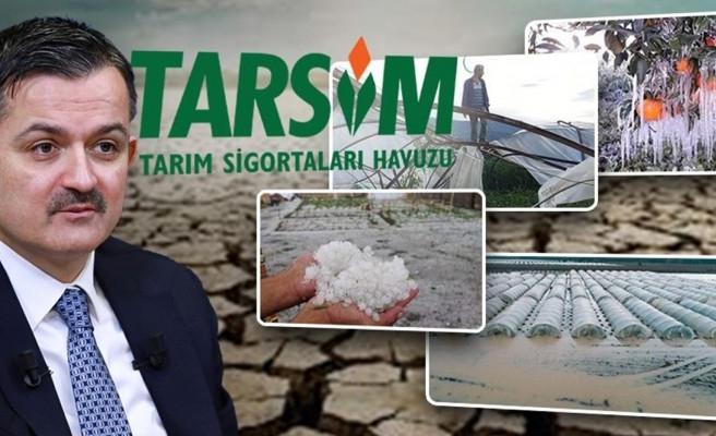 Bakan duyurdu: Çiftçilere tazminat ödenecek