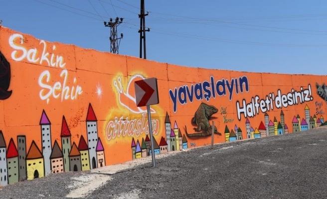 Halfeti'ye giden turistlere graffiti sürprizi