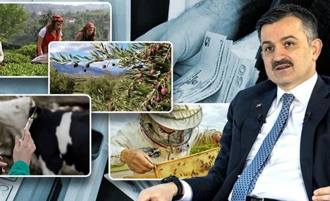 Tarım Bakanı açıkladı: 294 milyon destek