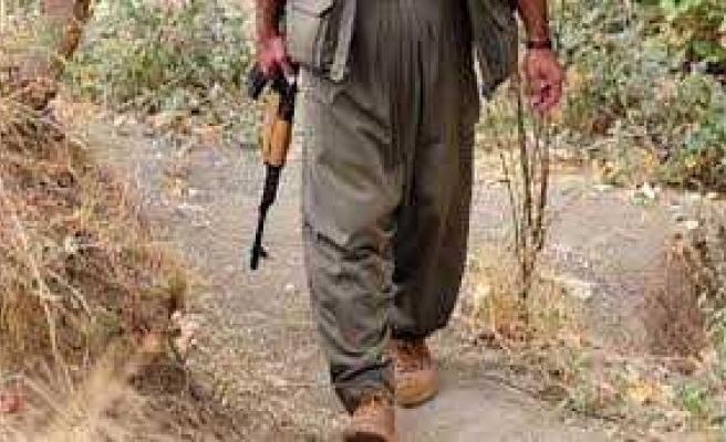 Şanlıurfa-Mardin sınırında bir terörist yakalandı