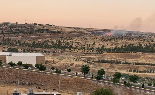 Urfa'da ormanlık alanda yangın