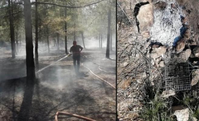 Şanlıurfa Orman Bölge Müdürü'nden 'mangal' uyarısı