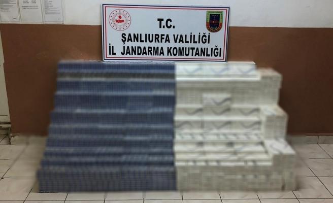 Urfa'da 28 bin 40 paket kaçak sigara ele geçirildi