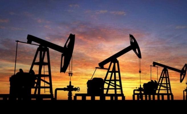 Araların da Urfa'da var: 5 ilde petrol arama ruhsat verildi