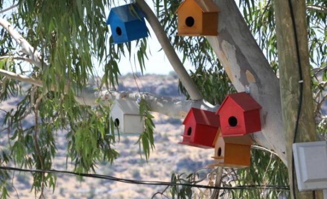 Halfeti'de kuşlar için hazırlanan yuvalar yerleştirildi