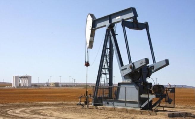 Şanlıurfa için petrol arama ruhsatı verildi