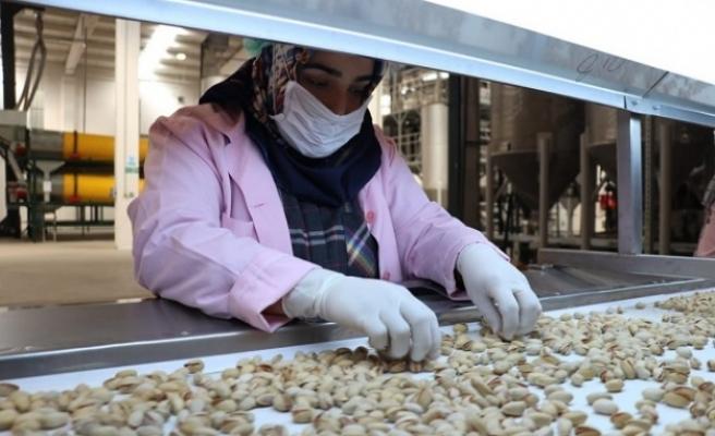 Bakan Selçuk: Nitelikli ve Mesleki Yeterlilik Belge Sahibi Olan Kadın Çalışanlarımızın Sayısı 50 Bini Aştı
