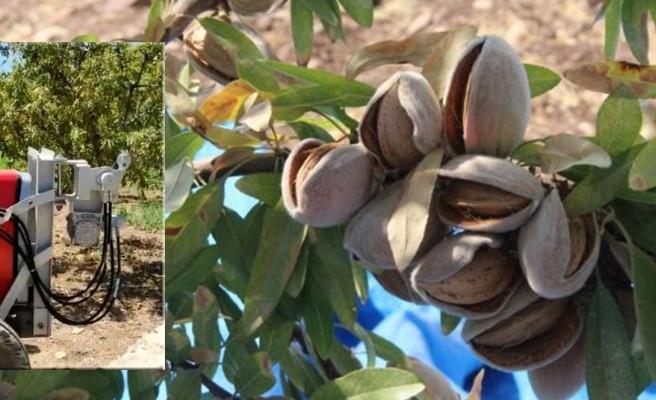 Şanlıurfa'da badem hasadı için makine icat edildi!