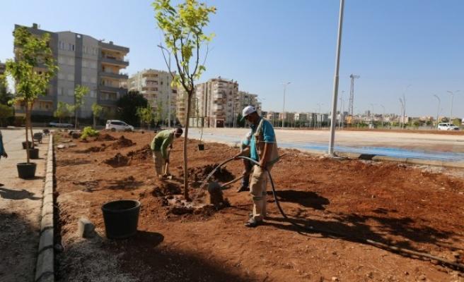 Yeni parklarda ağaçlandırma çalışmaları sürüyor