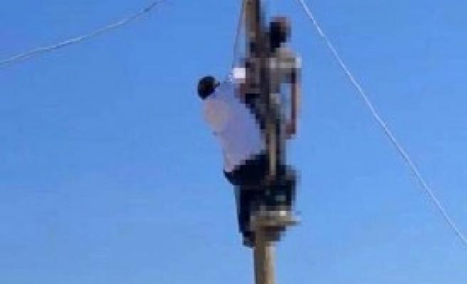 Urfa'da feci ölüm: Tamir için çıktığı direkte akıma kapıldı