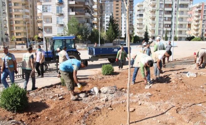 Haliliye'de yeni parklarda ağaçlandırma çalışmaları sürüyor