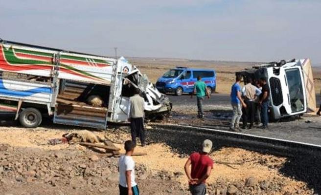Urfa'nın ilçesinde kaza: Kamyonetler çarpıştı