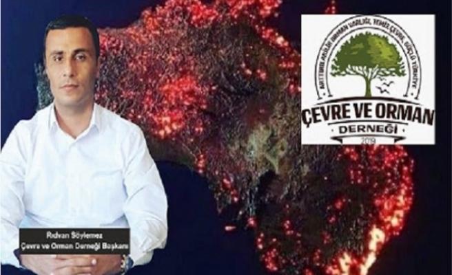 Çevre ve Orman Derneği: Vicdanınız Kurusun