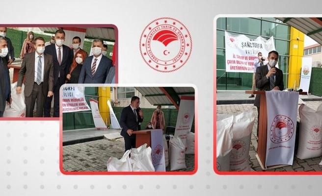 Urfa'da çiftçilere destek: Tohum dağıtıldı