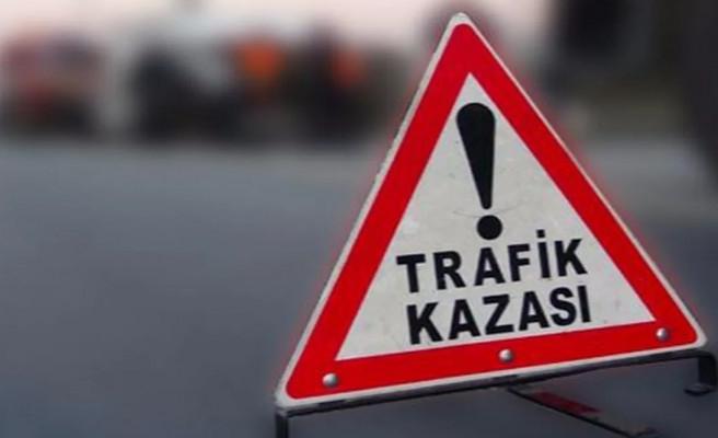 Urfa'nın ilçesinde otomobil ata çarptı: Yaralılar var