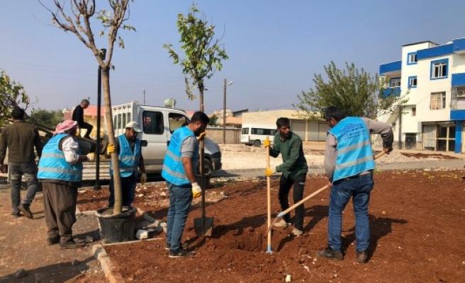 Eyyübiye'de kırsal mahallelerdeki çalışmalar sürüyor