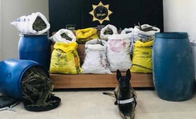 Şanlıurfa'da uyuşturucuyla mücadele sürüyor: 2 gözaltı