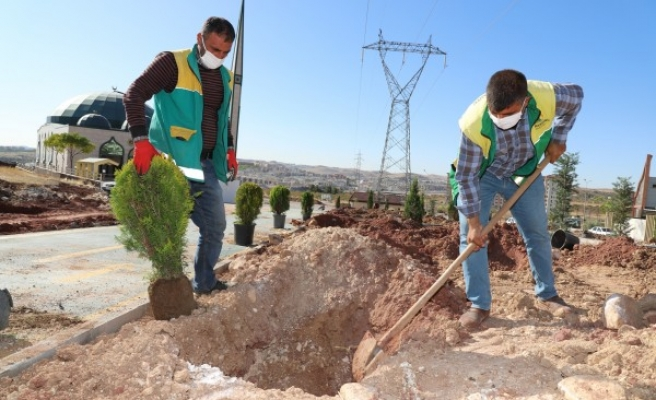 Karaköprü'de yeşil alan çalışmaları sürüyor