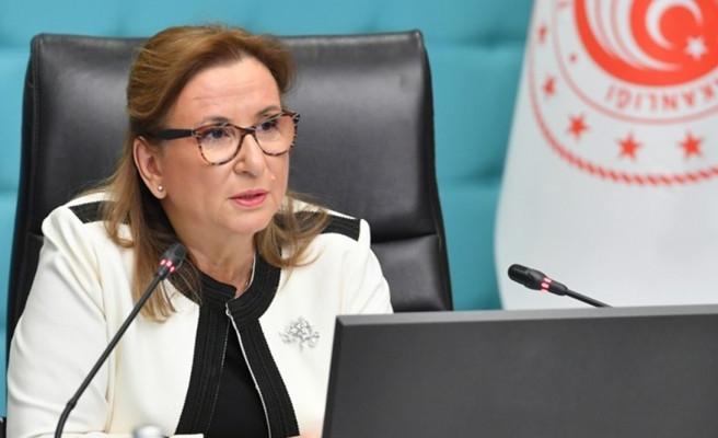 Ticaret Bakanından 'rekor ihracat' açıklaması