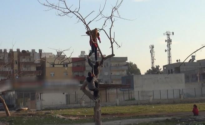 Urfa'da çocukların tehlikeli şakalaşması