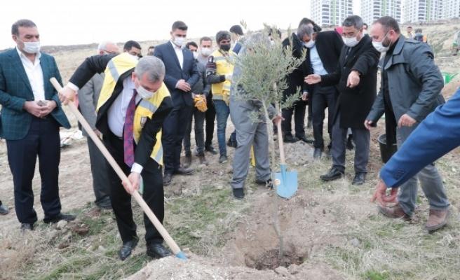 Urfa'da yeni yerleşim alanlarında ağaç dikim seferberliği başladı