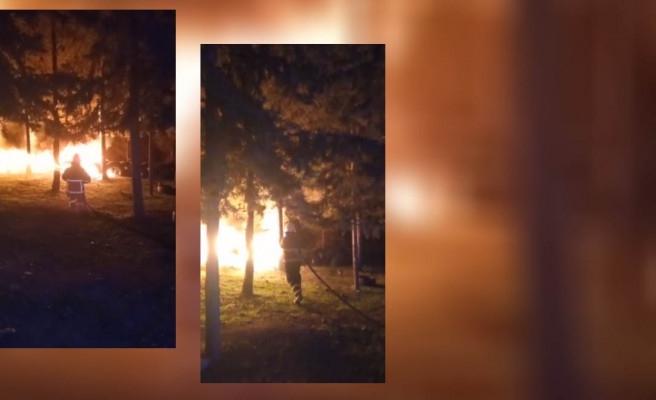 Şanlıurfa'da ormanlık alanda yangın