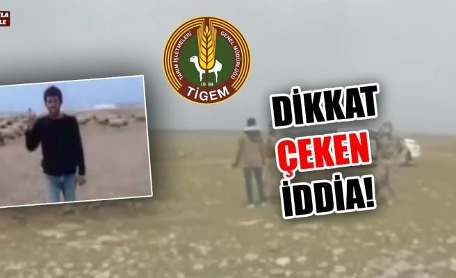CHP'li vekil TİGEM'e karşı çobanları savundu