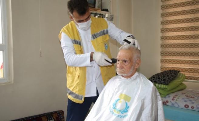 Haliliye'de yaşlı çınarlara destek sağlanıyor