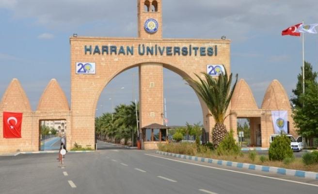 Harran Üniversitesi'nde bitkisel ekstraktlar yetiştirilecek