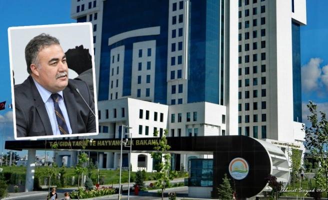 Daire Başkanı Özbek görevden alındı