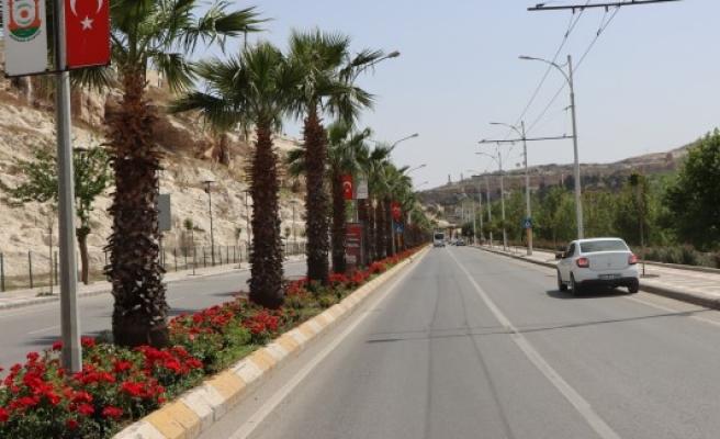 Şanlıurfa'da cadde ve sokaklarda görsel şölen