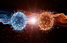 Coronavirüs'te Korkutan Gelişme Yaşandı