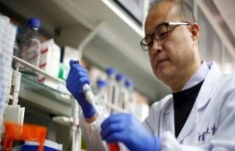 Koronavirüs Tedavisinde İyileşme Dönemini Kısaltan İlaç Geliştirildi
