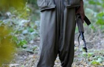 Şanlıurfa'da 3 terörist teslim oldu