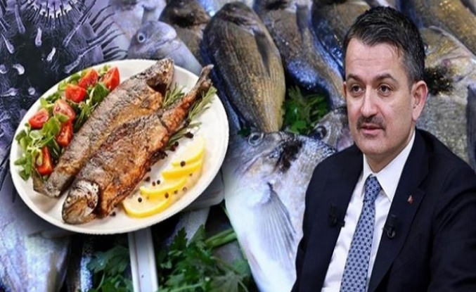 """""""Evde Hayat, Sofrada Balık"""" Kampanyası Başladı"""